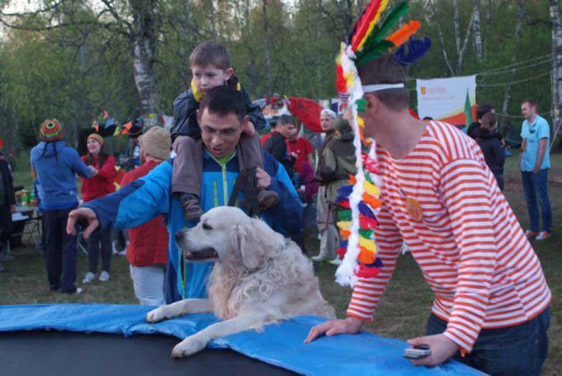 Собаки тоже хотят веселиться!