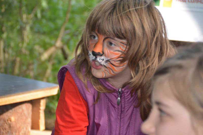 В Мещере водятся маленькие и добродушные тигры.