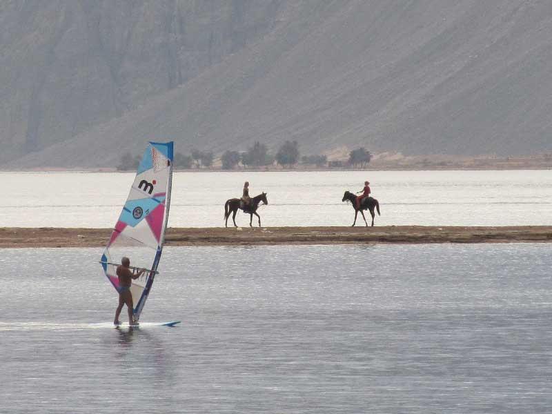Лошади и паруса - романтика египетской жизни...