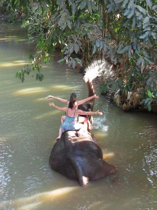 Самый лучший вид транспорта - слон.