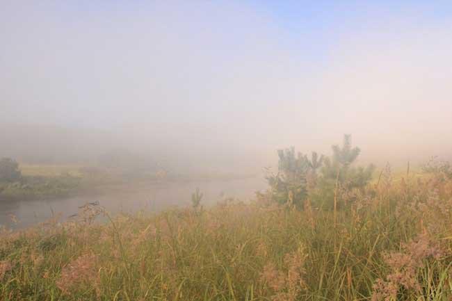 Там, за туманами...