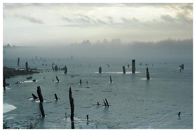 Туман и озеро (шестая)