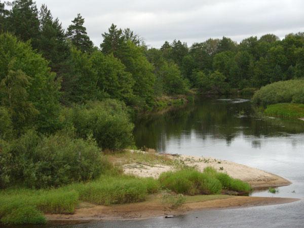 Торфяные реки, зелёные берега